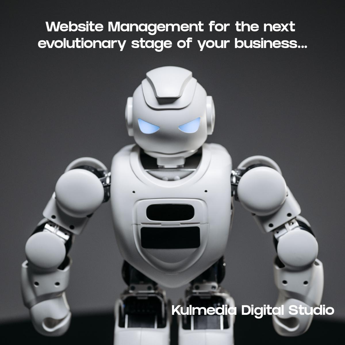 Website Management by Kulmedia Digital Studio